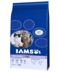 Kuivtoit kassidele IAMS ProActive Health Adult & Mature & Senior lõhe ja kanaga, 15 kg