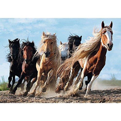 Pusle Hobused, 1000 hind