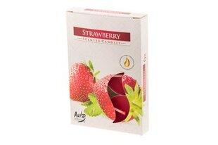 Lõhnaküünalde komplekt POLAR, maasikas, 6 tk