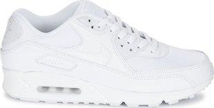 Meeste spordijalanõud Nike Air Max 90 Essential 537384-111, valge