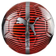 Jalgpall Puma One Chrome, 5 suurus