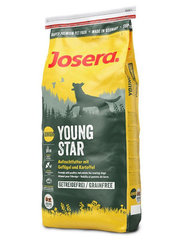 Kuivtoit koertele Josera Dog Junior Youngstar Grainfree, 15 kg