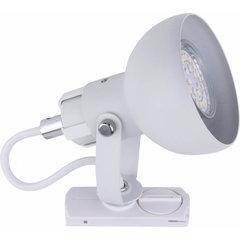 TK Lighting laevalgusti siinile Tracer hind ja info | Süvistatavad ja LED valgustid | kaup24.ee