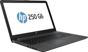 HP 250 G6 (2SX50EA) 8 GB RAM/ 1 TB + 1 TB SSD/