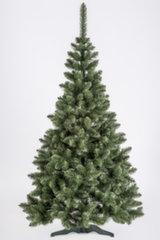 Jõulupuu Leila 1.2 m