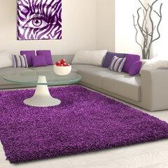 Vaip Ayyildiz LIFE lila, 160X230 cm hind ja info | Vaibad | kaup24.ee