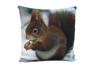 Dekoratiivne padi Comco Squirrel, 45 x 45 cm