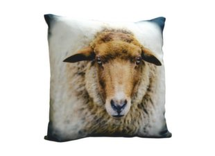 Dekoratiivne padi Comco Sheep, 45 x 45 cm