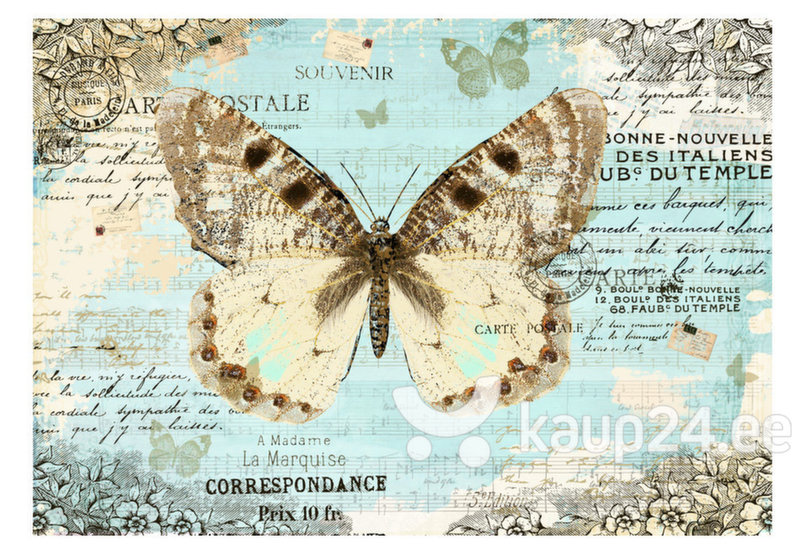 Fototapeet - Postcard with butterfly