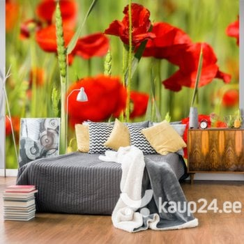Fototapeet - Cereal field with poppies