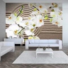 Fototapeet - Beautiful Zen Garden hind ja info   Fototapeet - Beautiful Zen Garden   kaup24.ee