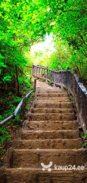 Fototaustapilt uksele - Photo wallpaper – Stairs from nature I tagasiside