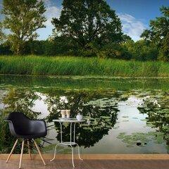 Fototapeet - The Magic Pond