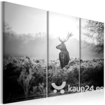 Maal - Black and White Deer I