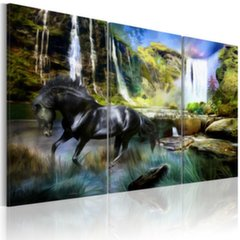 Maal - Horse on the sky-blue waterfall background hind ja info | Seinapildid | kaup24.ee
