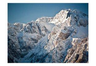 Fototapeet - Talv Alpides hind ja info | Fototapeet - Talv Alpides | kaup24.ee