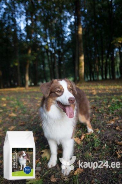 Gurmee kuivtoit täiskasvanud koertele, lambalihaga, 3 kg цена