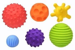 Arendavate pallide komplekt Fancy baby hind ja info | Imikute mänguasjad | kaup24.ee