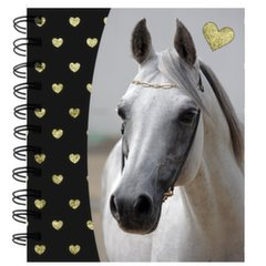 Kaustik spiraaliga Horse PP19H-3631