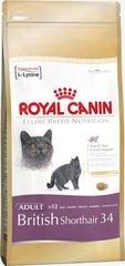 Сухой корм для кошек Royal Canin British Shorthair 400 g цена и информация | Сухой корм для кошек | kaup24.ee