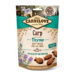 Carnilove Dogkoeramaius Carp with Thyme, 200 g hind ja info | Maiustused koertele | kaup24.ee