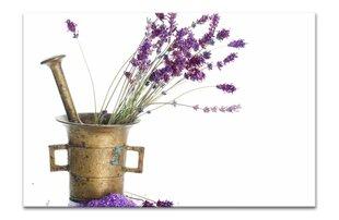 Maal, lavendlid, XL hind ja info | Seinapildid | kaup24.ee