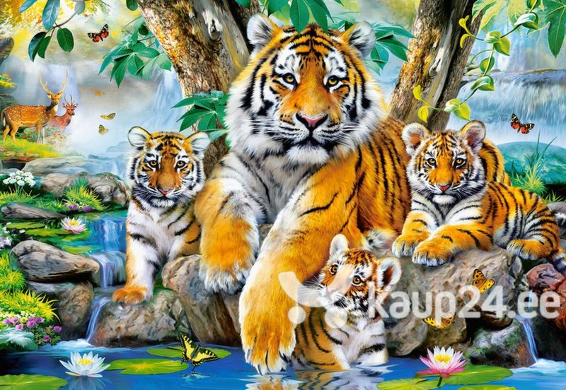 Pusle Puzzle Castorland Tigers by the Stream, 1000 osa hind