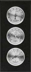 Elektrooniline termomeeter Bioterm 094009