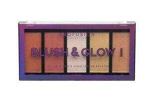 Näo kontuurimispalett Profusion Blush & Glow I 20 g