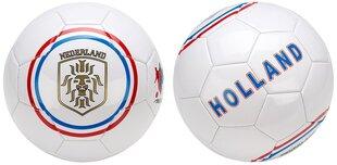 Jalgpalli pall Avento Euro Triumph, valge/sinine hind ja info | Jalgpalli pall Avento Euro Triumph, valge/sinine | kaup24.ee