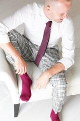 Meeste lillad viskoosist sokid ja lilla kootud lips hind ja info | Naiste sukkpüksid, sokid ja retuusid | kaup24.ee