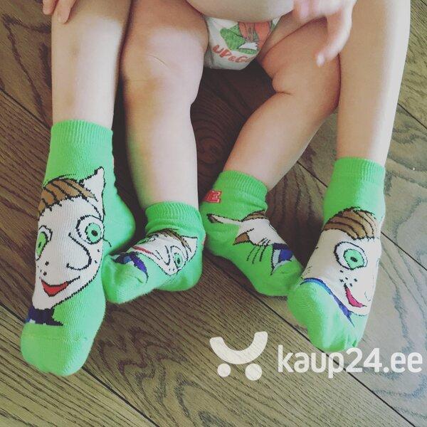 LOTTE sarja BRUNO rohelised sokid, 12-24 months