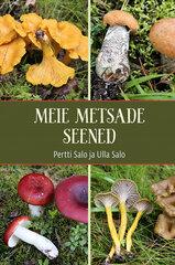 Meie metsade seened hind ja info | Entsüklopeediad, teatmeteosed | kaup24.ee