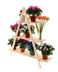 Lillepotihoidja hind ja info | Vaasid, alused, redelid lilledele | kaup24.ee