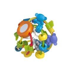 Arengupsühholoogiline pall-kõrin, Õpi ja mängi, PLAYGRO 4082679 hind ja info | Imikute mänguasjad | kaup24.ee