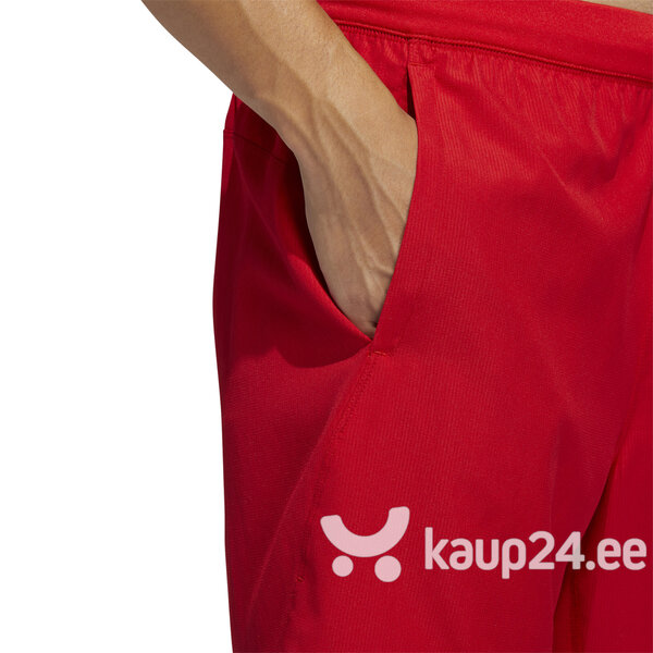 Lühikesed püksid Adidas 4K Spr Z Wn 8 Red tagasiside