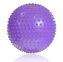 Massaaži- ja võimlemispall PROFIT 55cm