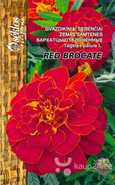 Peiulill/Tageetes Red brocate