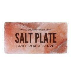 Soolaplaat toidu grillimiseks ja serveerimiseks Salt'sUp, 20x10x5cm hind ja info | Soolaplaat toidu grillimiseks ja serveerimiseks Salt'sUp, 20x10x5cm | kaup24.ee