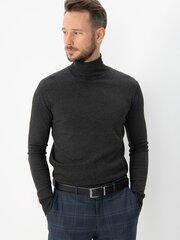 Meeste sviiter Fabio Veneti, hall hind ja info | Meeste kampsunid | kaup24.ee