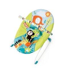 Детское кресло-качалка Bright Starts 60725 цена и информация | Шезлонги и кресла-качалки | kaup24.ee