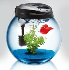 Akvaarium CLASSIC SPHERICAL TANK 37