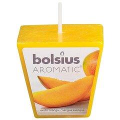 Lõhnaküünal Aromatic Exotic Mango, mango