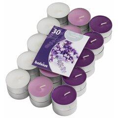 Ароматизированные чайные свечи Lavender Fields, 30 шт.