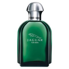 Tualettvesi Jaguar Jaguar for Men EDT meestele 100 ml