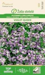 Лобулярия  Violet Queen