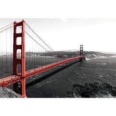 Fototapeet Golden Gate Bridge цена и информация | Fototapeedid | kaup24.ee