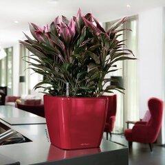 Lillepott Lechuza Quadro LS 50, erinevad värvid
