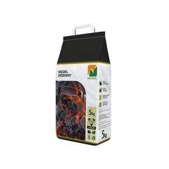 Grillsüsi 5 kg NATERIAL hind ja info | Grillid, suitsuahjud, grillimistarvikud | kaup24.ee