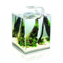 Akvaarium SHRIMP SET SMART 2 30 White